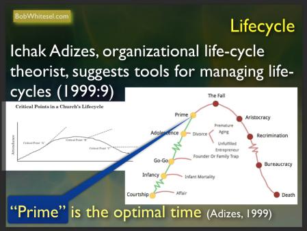 CHART Adizes Life-cycle chart.png